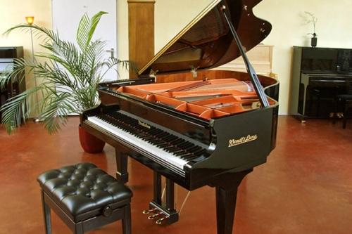 Verkauf von Klavieren und Fluegeln Markus Niewienda