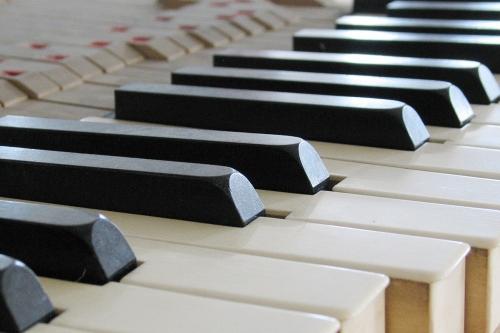 Klavier-Begutachtungen von Markus Niewienda